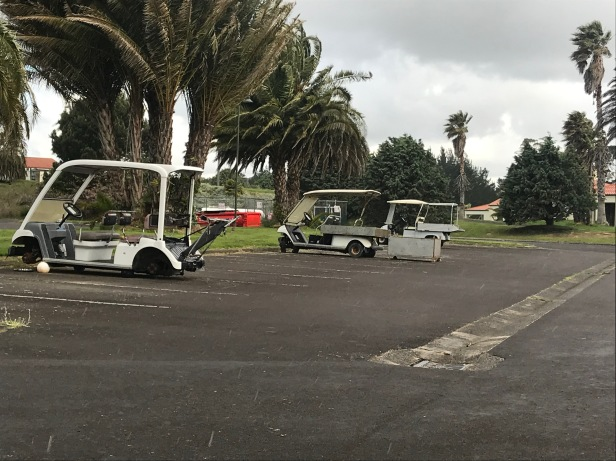 formosa golf carts